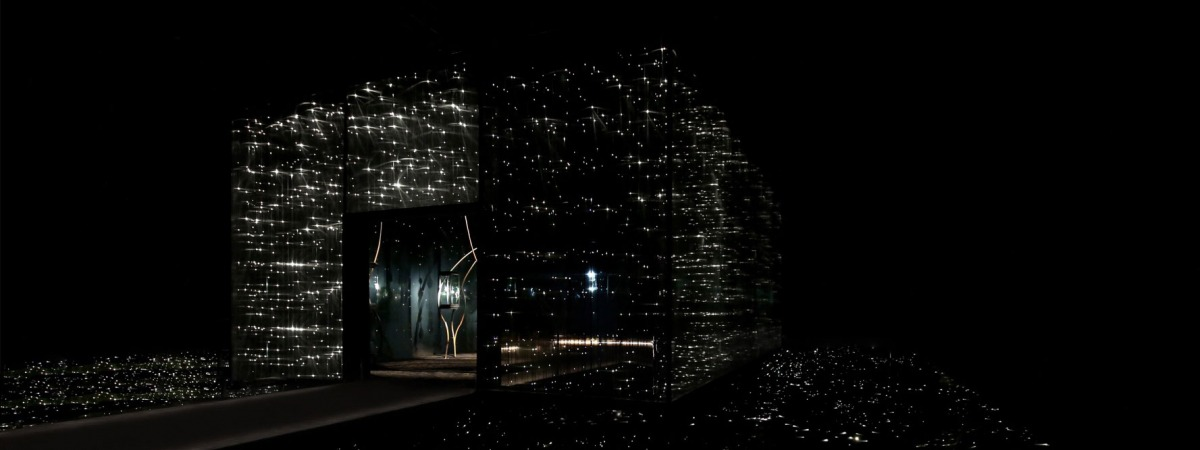 Giant 3D museum display made of transparent laservoile and aluminium frames