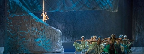The Little Mermaid Ballet - AluShape Cretonne